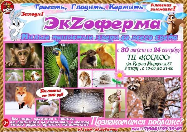 """Выставка """"ЭкZоферма"""""""