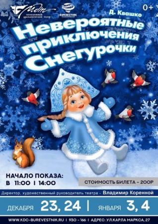 Новогоднее представление «Невероятные приключения Снегурочки»