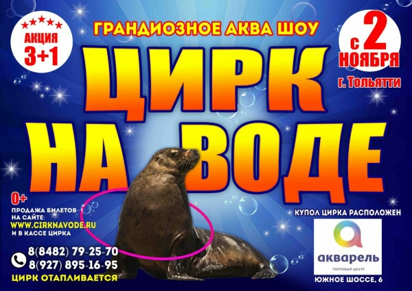 "Цирк на воде ""Aqua Show"""
