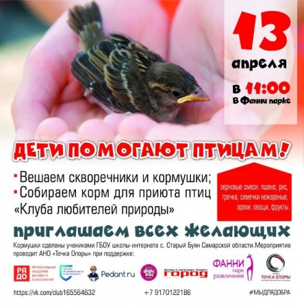 Дети помогают птицам!